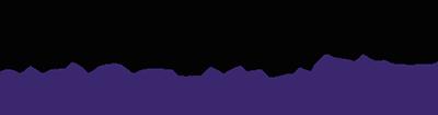 logo lepolystyrene